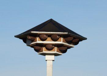 Zwaluwhotel klaar voor bewoning