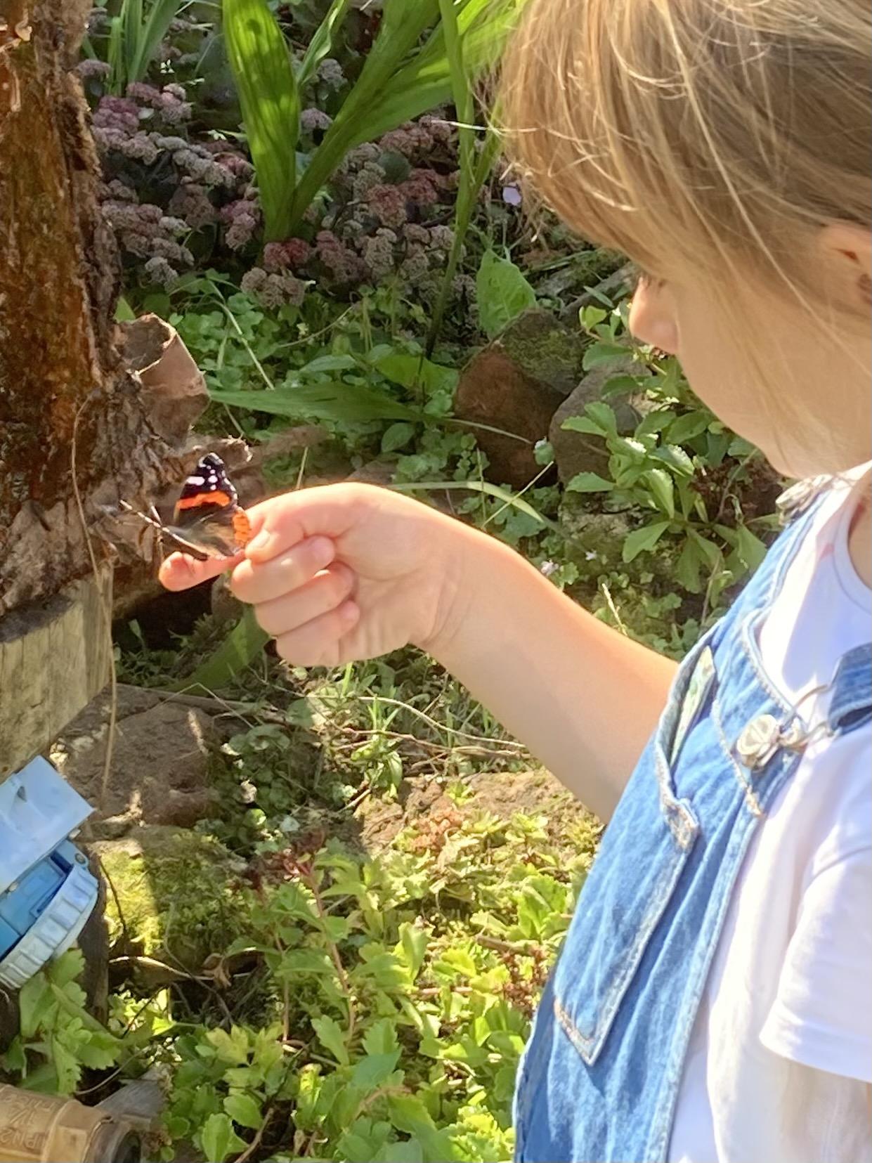 Geslaagde natuurmarkt vlinders
